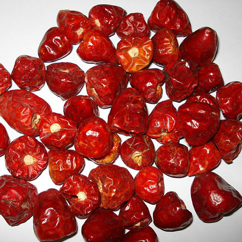 Dried Red Chilli Short Exporter In Chennai Dried Red Chilli Short Exporter In Chennai